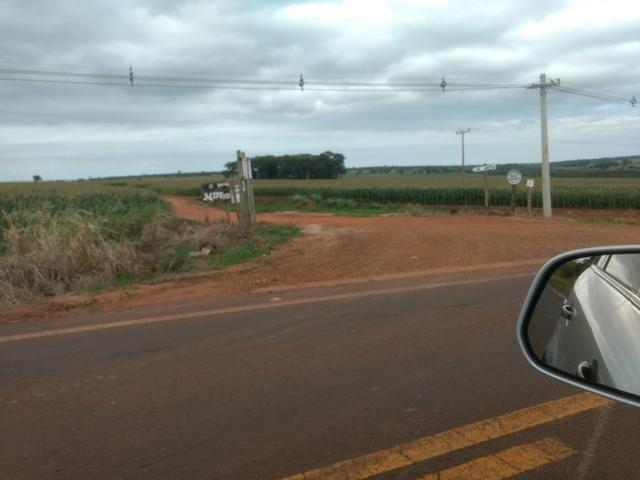 Fazenda. no Ms p Arrendamento de Lavouras 2650 há Show de Bola - Foto 6