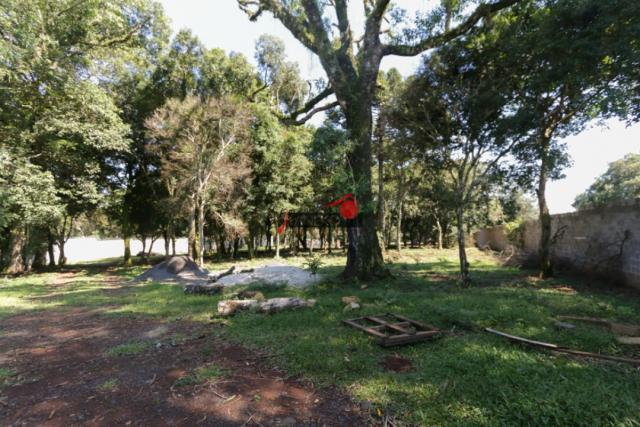 8287 | terreno à venda em industrial, guarapuava - Foto 4