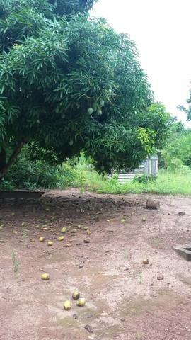 Chácara em Cacoal próximo ao Hospital Regional - Foto 5