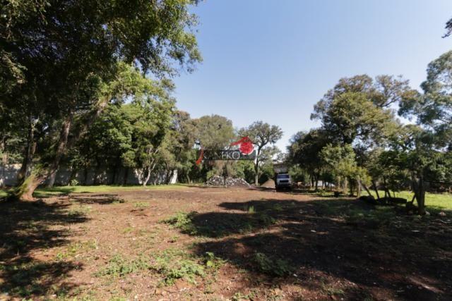 8287 | terreno à venda em industrial, guarapuava - Foto 9
