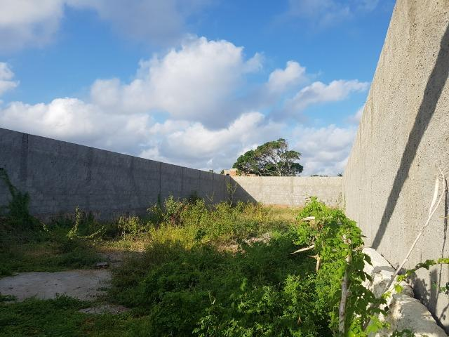 Terreno murado na Barra Nova - Foto 4