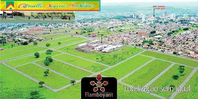 Residencial Flamboyant - Entrada Facilitada - Terrenos Financiados - Jataí-GO - Foto 6