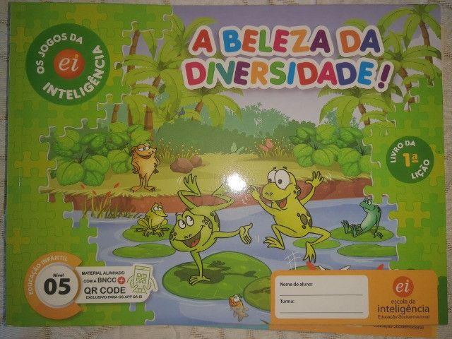 Kit 9 Livros Ei Escola Da Inteligência 2° Período 4 E 5 Anos - Foto 5