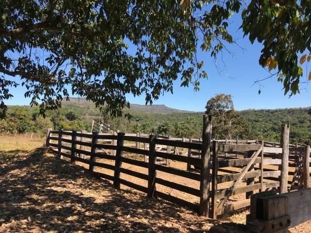 Fazenda Pecuária - 700 Ha - Chapada dos Guimarães - Foto 11