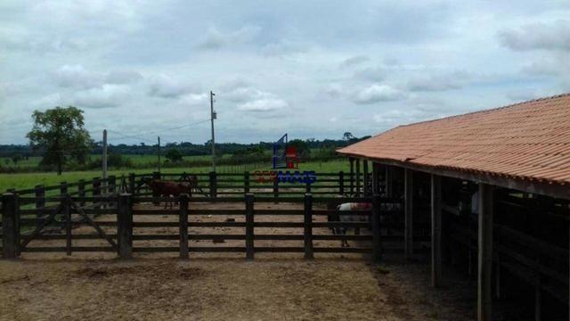 Fazenda à venda, por R$ 14.000.000 - Zona Rural - Cacoal/RO - Foto 4