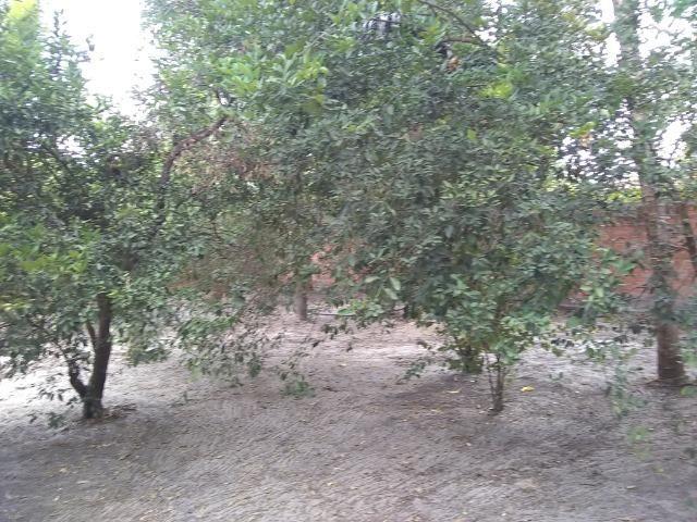Terreno 15x30(Panaquatira) - Foto 2