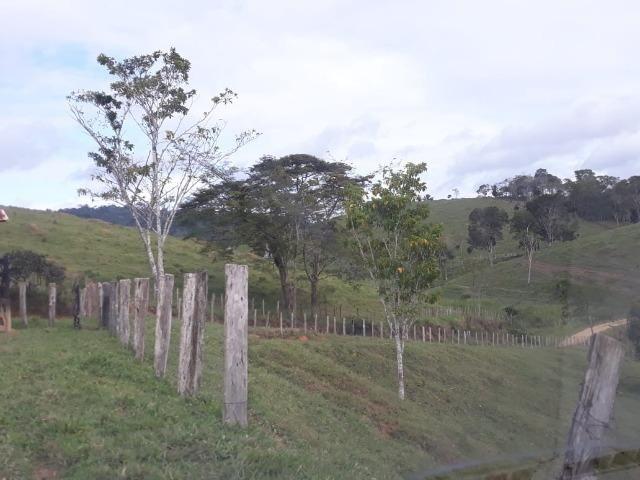 Fazenda de Pecuária - Foto 12