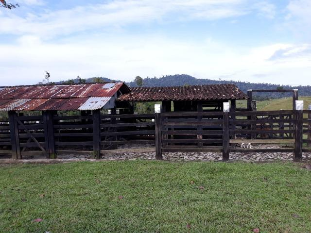Fazenda de Pecuária - Foto 3