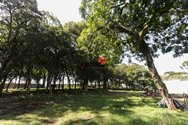 8287 | terreno à venda em industrial, guarapuava - Foto 7