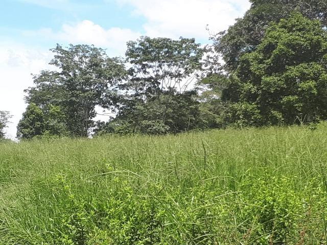 Fazenda c/ 508he c/ 330he Formados, 28km de Alto Araguaia-MT - Foto 15