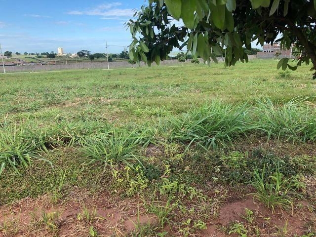 Terreno a Venda Condomínio Mirante do Rio Paraná - Foto 2