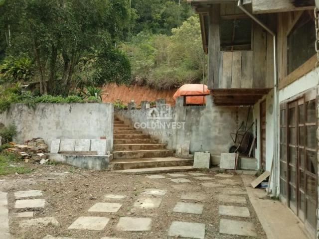 Sitio no Moura - Foto 3