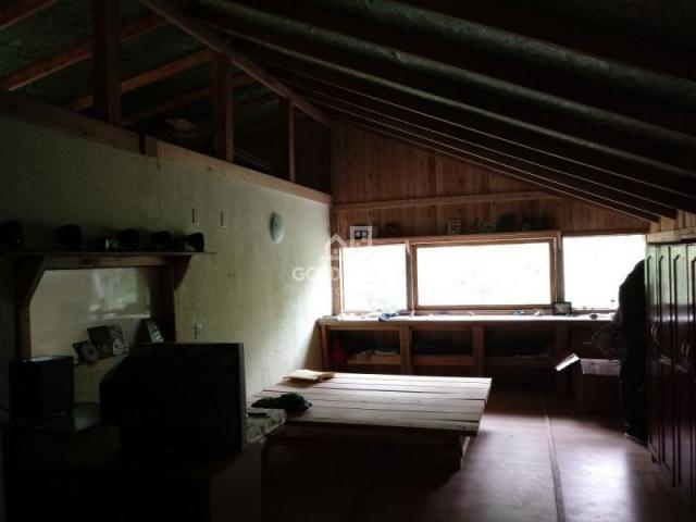 Sitio no Moura - Foto 14