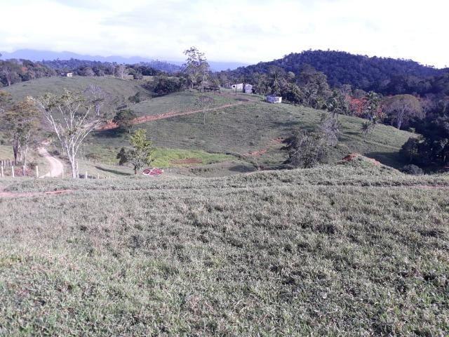 Fazenda de Pecuária - Foto 15