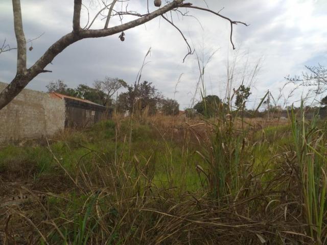 Terreno para venda no tropical de ville - Foto 4