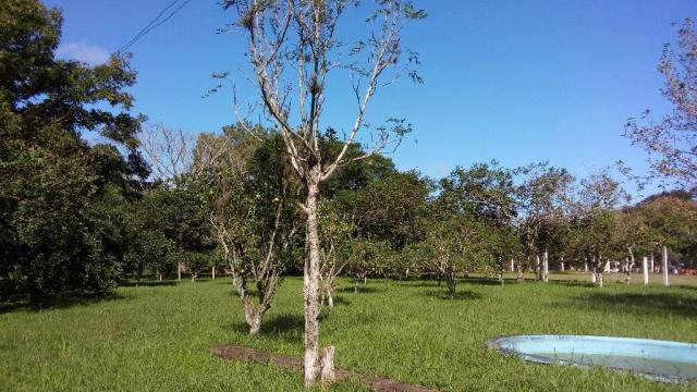 Terreno residencial à venda, Aberta dos Morros, Porto Alegre. - Foto 3