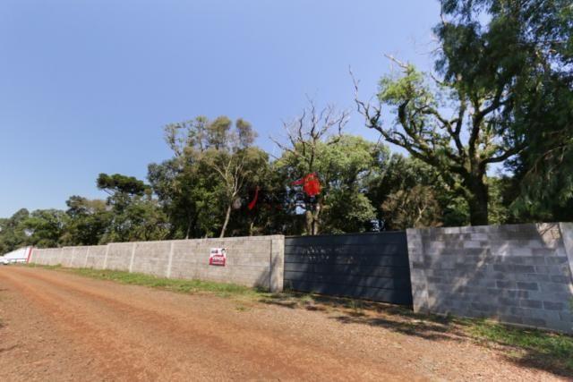 8287 | terreno à venda em industrial, guarapuava - Foto 2
