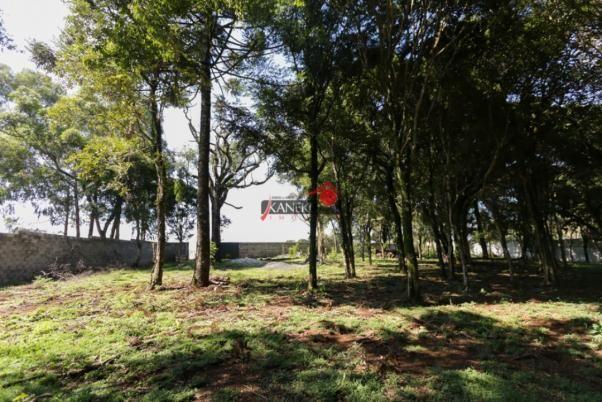 8287 | terreno à venda em industrial, guarapuava - Foto 10