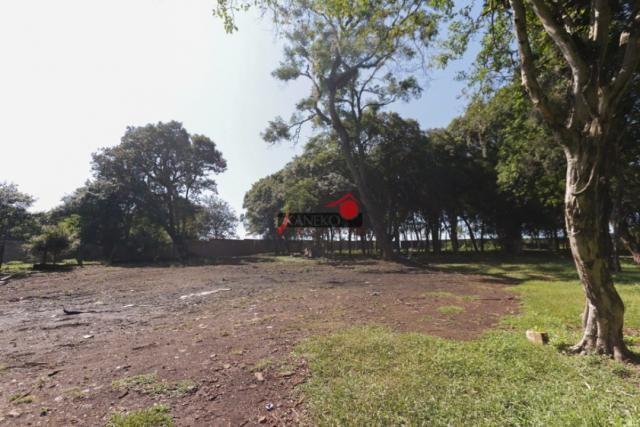 8287 | terreno à venda em industrial, guarapuava - Foto 8