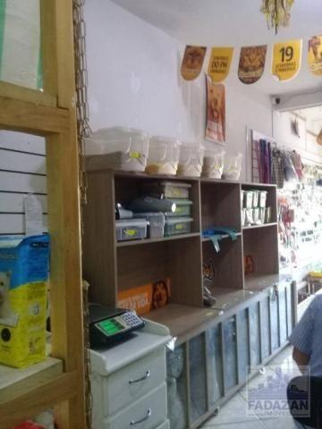 Pet shop e aviário, 30 m² por r$ 35.000 - bairro alto - curitiba/pr