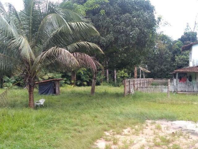 Sitio no cupiuba em Castanhal-Pa 100x450 R$ 120 mil reais troco em casa em Castanhal - Foto 9
