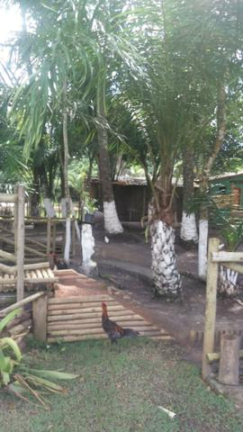 Eco village aritagua - Praia do Norte - Ilheus - Foto 4