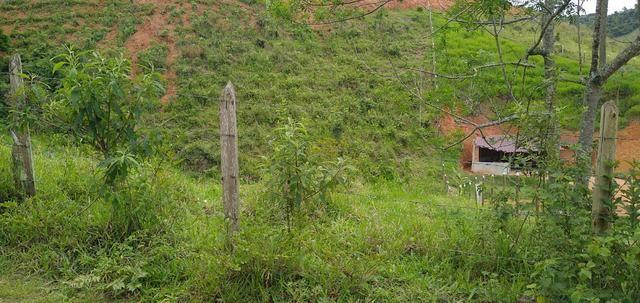 Vendo Chacara e lotes - Foto 3