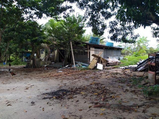 Sitio no cupiuba em Castanhal-Pa 100x450 R$ 120 mil reais troco em casa em Castanhal - Foto 15