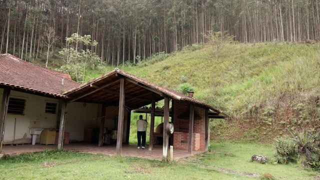 Fazenda com 566 hectares com 400.000 pés de eucaliptos - Foto 3