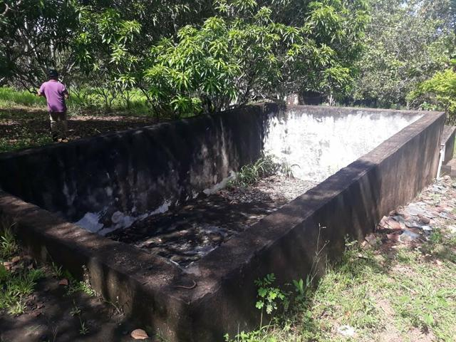 Vendo Chácara Escriturada de 2 hectares na Região do Novo Gama à 10 minutos do Lago Azul - Foto 9