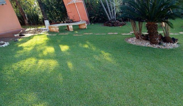 Rancho em Indiaporã 6050m², de fundos com o Rio Grande com casa sede, casa de caseiro, - Foto 8