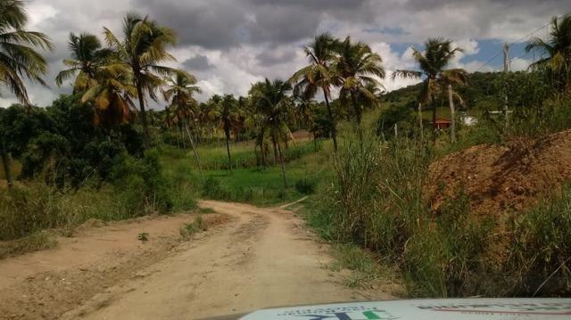 Excelente propriedade de 9.5 hectares, rica em água, em Glória do Goitá-PE - Foto 5