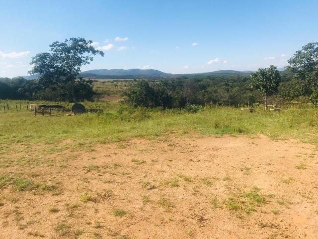 Fazenda 11 Alqueires Municipio Cocalzinho - Foto 13