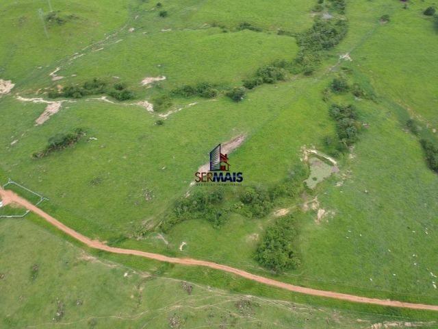 Fazenda à venda, por R$ 10.000.000 - Zona Rural - Presidente Médici/RO - Foto 19