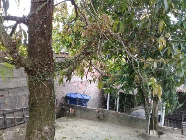 Pequeno sítio de 720 m2, todo plantado em Itambi - Foto 17