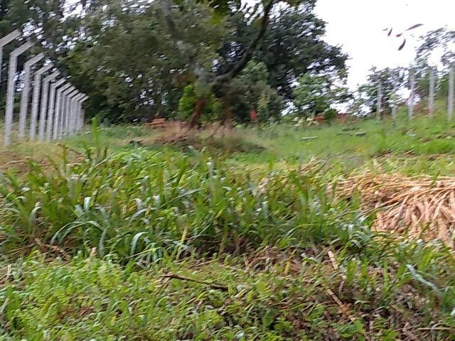 Chácara em fazenda Rio grande