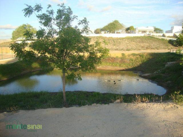 Terreno à venda, 367 m² por R$ 57.000,00 - Condomínio Privê Portal do Agreste - São João/P - Foto 11