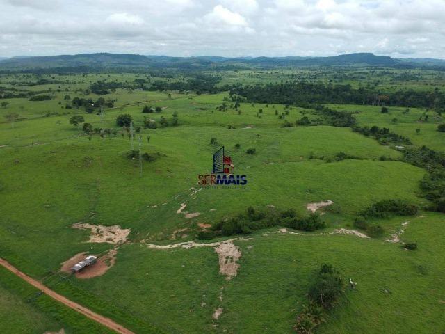 Fazenda à venda, por R$ 10.000.000 - Zona Rural - Presidente Médici/RO - Foto 17
