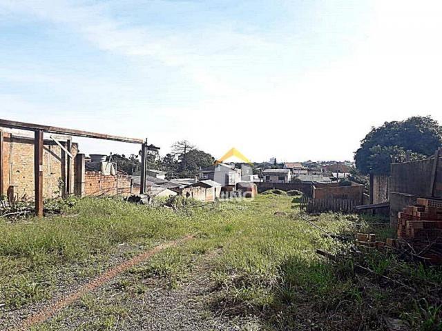 Terreno para alugar, 1800 m² por r$ 2.000,00/mês - santa fé - gravataí/rs - Foto 6