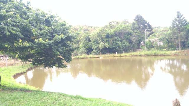 Chacara R$ 310,000.00 Faz. Rio Grande /Mandirituba medindo 20.000.00m2 - Foto 5