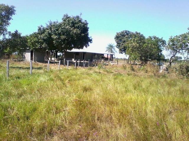 Fazenda em Luciara, MT - Foto 6