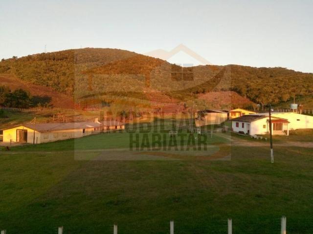 Haras para Venda, Tijucas do Sul / PR, bairro Pinhal, 8 dormitórios, 8 suítes, 1 banheiro - Foto 13