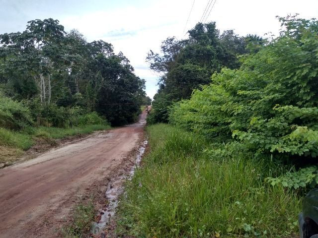 Sitio no cupiuba em Castanhal-Pa 100x450 R$ 120 mil reais troco em casa em Castanhal - Foto 11