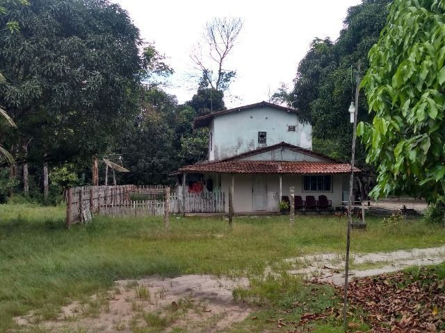 Sitio no cupiuba em Castanhal-Pa 100x450 R$ 120 mil reais troco em casa em Castanhal - Foto 8