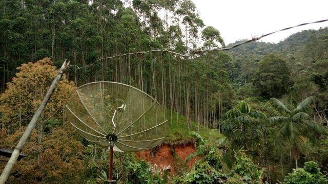 Fazenda com 566 hectares com 400.000 pés de eucaliptos - Foto 20