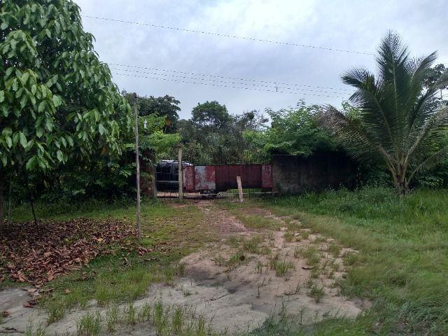 Sitio no cupiuba em Castanhal-Pa 100x450 R$ 120 mil reais troco em casa em Castanhal - Foto 4