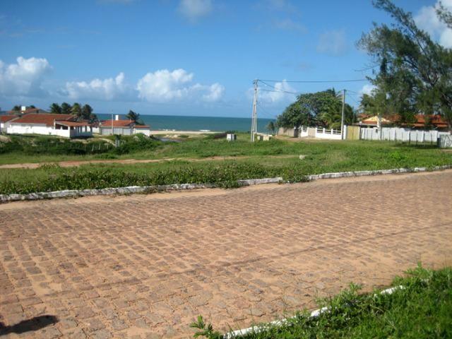 Excelente terreno na Praia de Muriú - Foto 12
