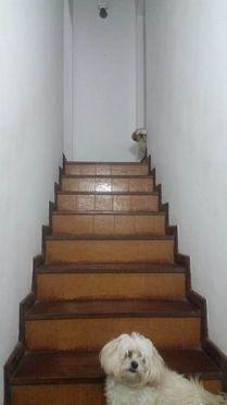 Casa à venda com 4 dormitórios em Castelanea, Petrópolis cod:116 - Foto 7