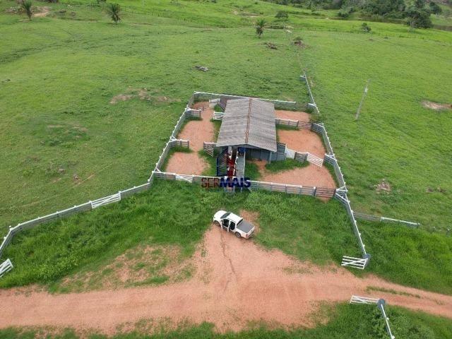 Fazenda à venda, por R$ 10.000.000 - Zona Rural - Presidente Médici/RO