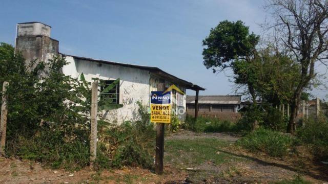 Terreno à venda, 330 m² por r$ 200.000,00 - são jerônimo - gravataí/rs
